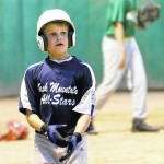 Back Mountain Little League teams excel in district, section play