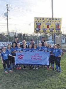 Tunkhannock hands Back Mountain first loss in 9-10 softball