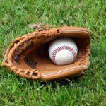 Back Mountain eyes Pennsylvania Prep American Legion Baseball state championship
