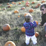 Back Mountain Harvest Assembly holds first-ever Fall Festival and Food Truck Fare