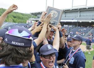Dallas wins District 2 Class 4A baseball title