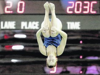 Jaelyn Shaver, of Dallas High School, finishes sixth in state diving
