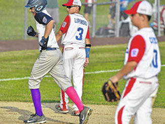 Little League: Back Mountain National defeats Swoyersville for District 31 championship
