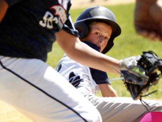 Little League: Back Mountain National gets perfect game from pitching duo in sectionals